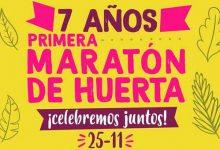 Sabe la Tierra: Primera Maratón de Huerta