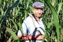 Hersilia, un pueblo libre de agrotóxicos