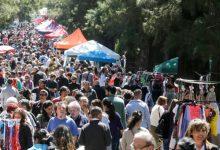 Boom verde: cada vez más jóvenes, familias y chefs eligen los mercados orgánicos