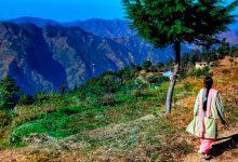 India, anfitriona del Día Mundial del Medio Ambiente 2018