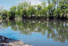 La contaminación del agua podría ser un delito ambiental
