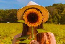 15 flores y sus efectos terapéuticos