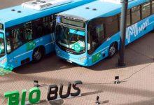 Los trolebuses de Rosario van a funcionar con energía solar