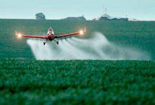 Agrotóxicos: Vidal aprobó las fumigaciones aéreas sin restricción