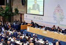 Argentina presenta ante la ONU una declaración basada en la sustentabilidad