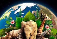 Se celebra en todo el mundo el Día de la Tierra