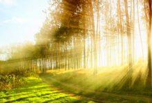 Pensar el ambiente y nuestra supervivencia las 24 horas