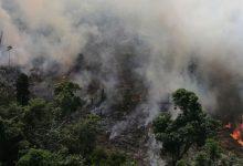 El Amazonas en llamas: incendios forestales superan los 70.000 en el año en Brasil