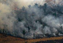 El G7 acordó aportar USD 22 millones para combatir los incendios en el Amazonas, pero Jair Bolsonaro puso en duda la ayuda